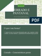 Cerrado e Pantanal