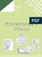 017-profesionesyoficios.pdf