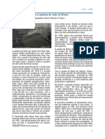 Artigo_brasileira.pdf