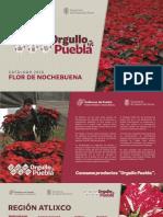 Flor de Nochebuena - Orgullo Puebla