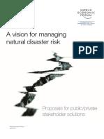 WEF VisionManagingNaturalDisaster Proposal 2011