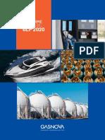 Informe Anual del GLP - 2020