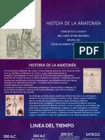 Historia de la Anatomia (Linea del Tiempo)