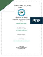 ETICA PROFESIONAL DEL PSICOLOGO