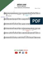 DinámicasLigaduras.pdf