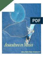 politicas acuicuolas pdf.pdf