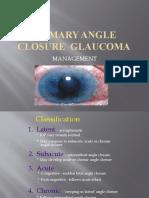 Primary Angle Closure Glaucoma