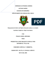 T15000 FRANCO ISIDRO JERÓNIMO  TESIS.pdf