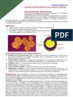 Infecciones Bacterianas del Sistema Nervioso - Agentes Causales