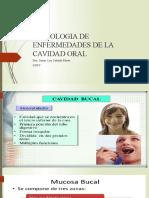 teoria 1cavidad oral UNFV (2).pptx