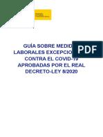 Guia RDLEY 8_2020.pdf