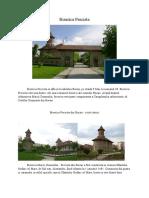 Monument arhitectural Precista-Bacau, Ionut Balan