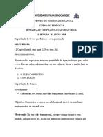 EXPERIENCIA LAB II SESSAO - 3 Ano-  2020