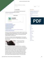 Lasunadi vati health benefits - bimbima.pdf