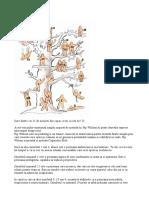 Test omuleti copac.doc