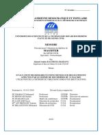 kacimi-these-magister-benouar-Director.pdf