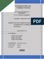 informe n° 10 (1)...