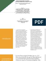 diapositivas de sustentacion teorias y enfoques del desarrollo