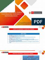 COMITE SST_2020_JPPS_TALLER.pdf