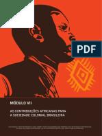 contribuicoes_africa_brasil_colonia.pdf