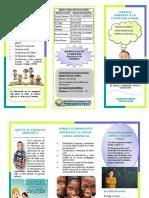 Folleto Transito Armonico a la educacion formal.pdf