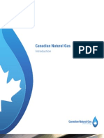 Canadian Natural Gas - Introduction