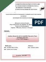 memoire fin d'études sur l'analyse financiére de la rentabilité d'une institution bancaire.pdf