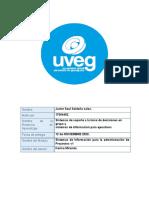 Javier_saldana_17004452 Sistemas de Soporte a La Toma de Decisiones en Grupo y Sistemas de Información Para Ejecutivos