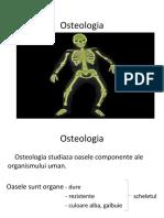 Osteologia-curs-2