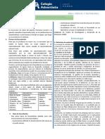 2° Secundaria Fecundacion y Gestación GT.pdf