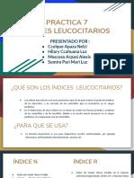 PPT INDICES LEUCOCITARIOS, PRACTICA 7
