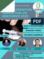BROCHURE-CURSO-DE-ESPECIALIZACIÓN-EN-TERAPIA-COGNITIVO-CONDUCTUAL-EN-ADICCIONES-2020