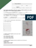 Ficha de trabalho_sistema digestivo_1