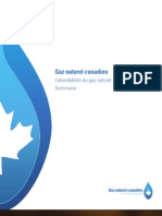 L'abordabilité du gaz naturel