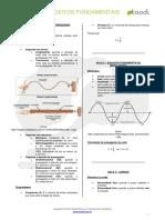 Conceitos Fundamentais.pdf