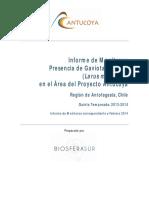 Informe Monitoreo Febrero 2014 (2)