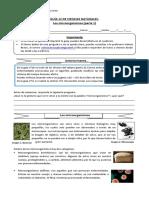 5°-básico-Ciencias-Naturales-Guía-12-Valeria-Bravo