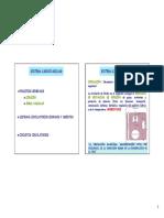 Tema 04. Sistema Cardiovascular.pdf