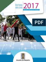 Libro indicadores  2017 - Secretaría de Salud