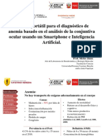 MEM_Zimic.pdf