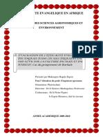 2010_MUKENGERE_BAGULA_ESPOIR_01_THESIS.pdf