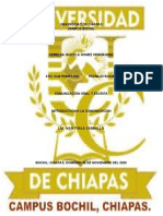 UNIVERSIDAD DE CHIAPAS