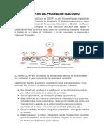 DESCRIPCIÓN DEL PROCESO METODOLÓGICO.docx