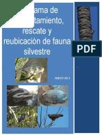 Protección ornitofauna