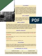 Las proteínas GIMNASIO