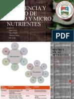 fin- Deficiencia y exceso de macro y micro nutrientes