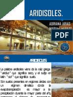 Aridisol-convertido