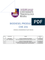 BIODIESEL PLANT DESIGN.docx