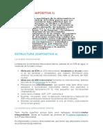 Expo Informacion