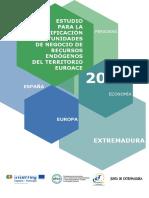 Estudio_para_identificación_de_oportunidades_de_negocio_de-_recursos_endogenos_del_territorio_EUROACE_PDF-1